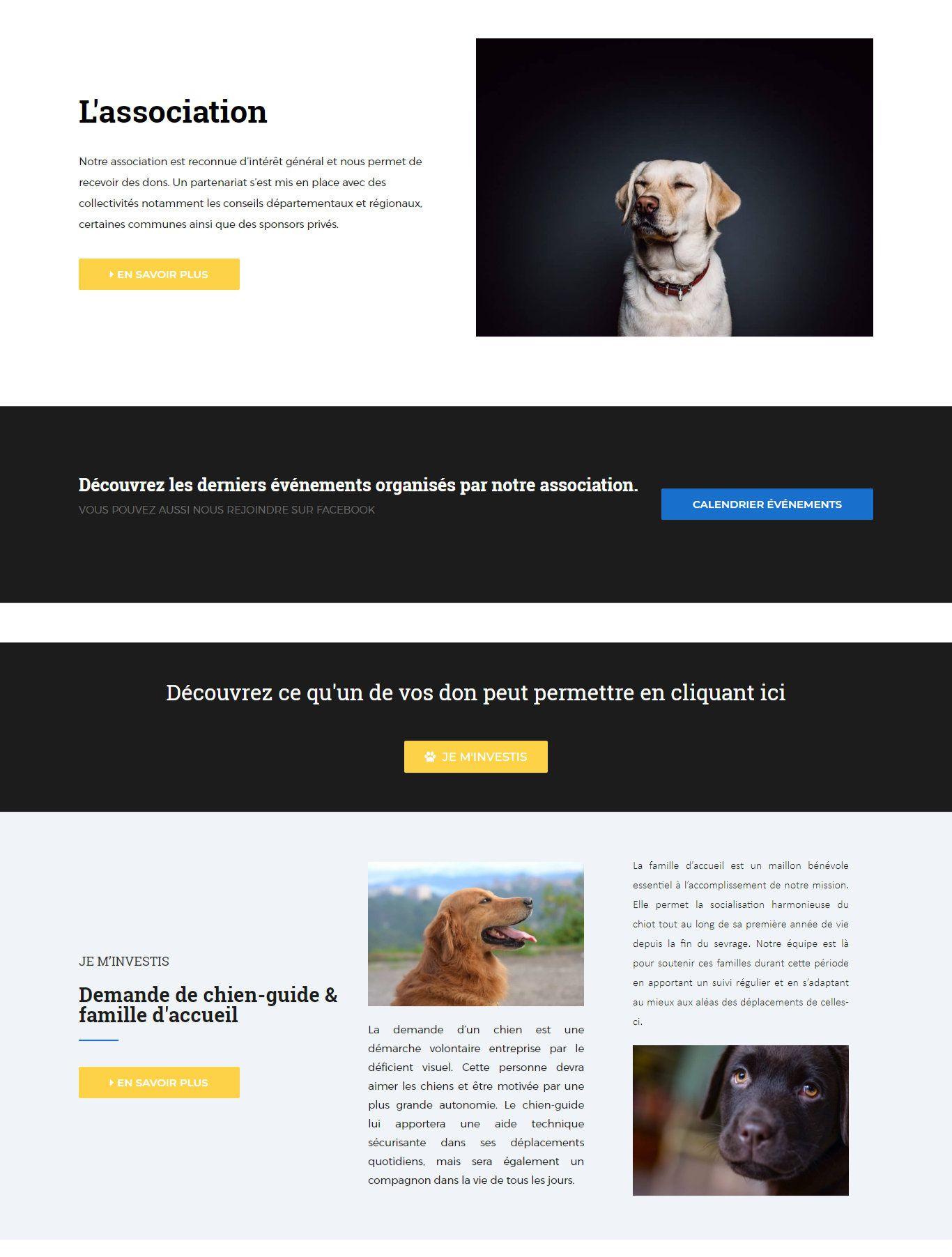 03_emcga_présentation_création_site_internet_albi_light